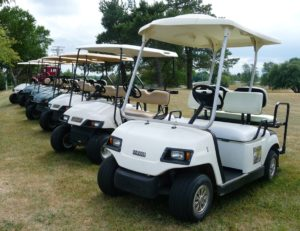 Leisure Golf Cart fleet (1)